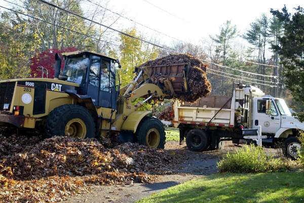 Stamford residents have the option to bag their leaves or have the city pick them up at the curb this fall.