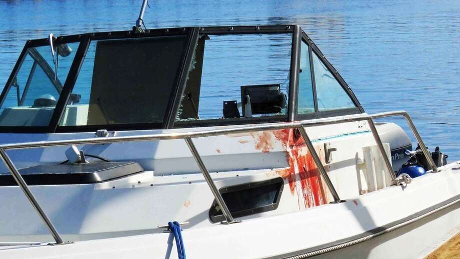The boat vs. whale collisions happened just minutes apart Sunday in Breakwater Cove and at Hopkins Point. Photo: KSBW