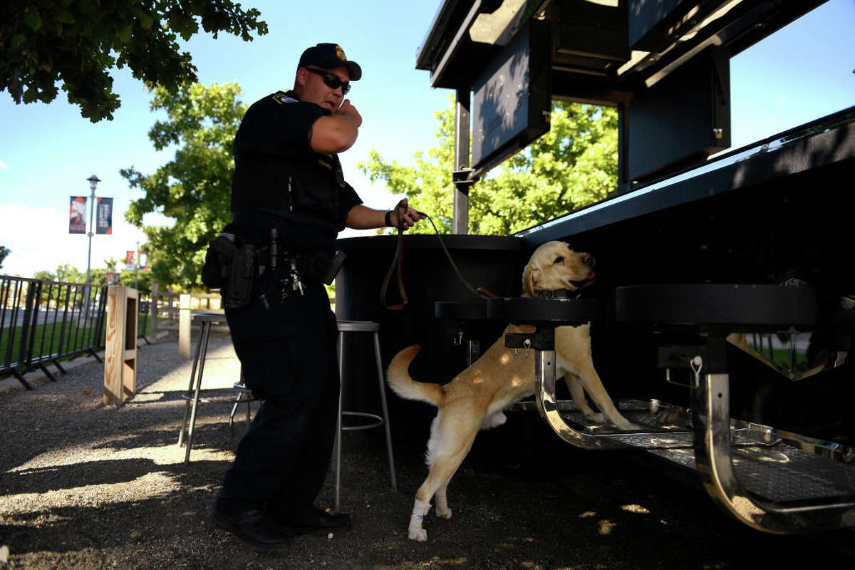 DENVER, CO - SEPTEMBER 3: J. Richardson of the Department of Homeland Security federal protective service searching a bar outside the the stadium with Rony his yellow Lab during their training as the Denver Police Department conducted K-9 explosives detection at the Broncos Mile High Stadium. The training is in conjunction with F.R.E.D., the Front Range Explosives Detection K-9 Group that is comprised of explosives detection K-9 teams from all over the front range. October 3, 2018 in Denver, CO. (Photo by Joe Amon/The Denver Post via Getty Images)