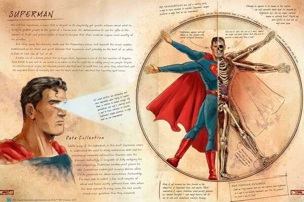 Anatomy of a Metahuman' dissects superheroes in original