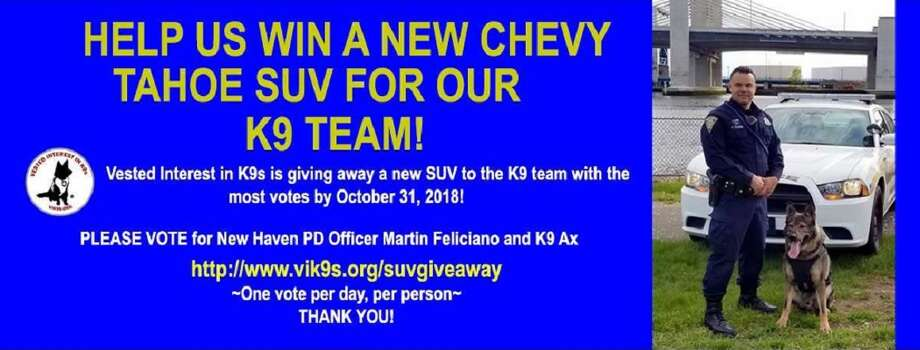 Contest poster Photo: Courtesy Of Vested Interest In K9s