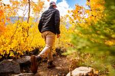 Taking a walk through the fall foliage at Little Lakes Valley in Mono County on October 3rd, 2018.