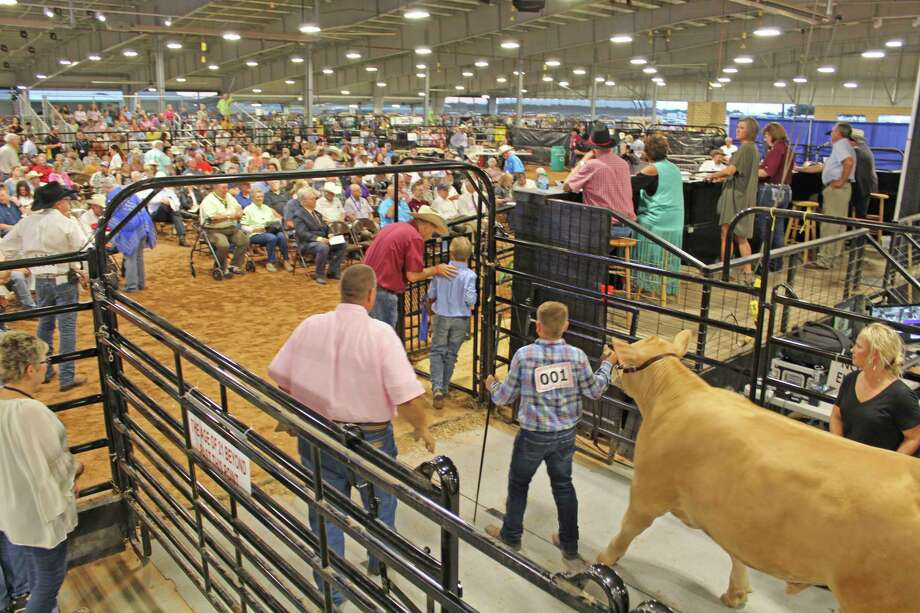 The Fort Bend County Association recently awarded scholarships totaling over $200,00 to area students. Funds for scholarships are provided by donations, sponsorship and the organizations' fundraising events such as the annual livestock auction. Photo: Kristi Nix / Staff Photo