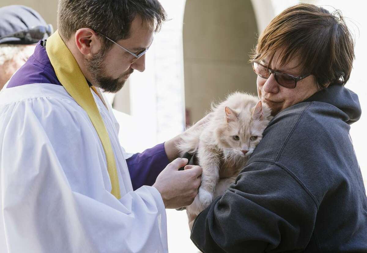 The Rev. Jude Harmon blesses Mira Larkin's cancer-stricken cat, Gnocchi, as creatures with paws took to the pews at the Nob Hill church.
