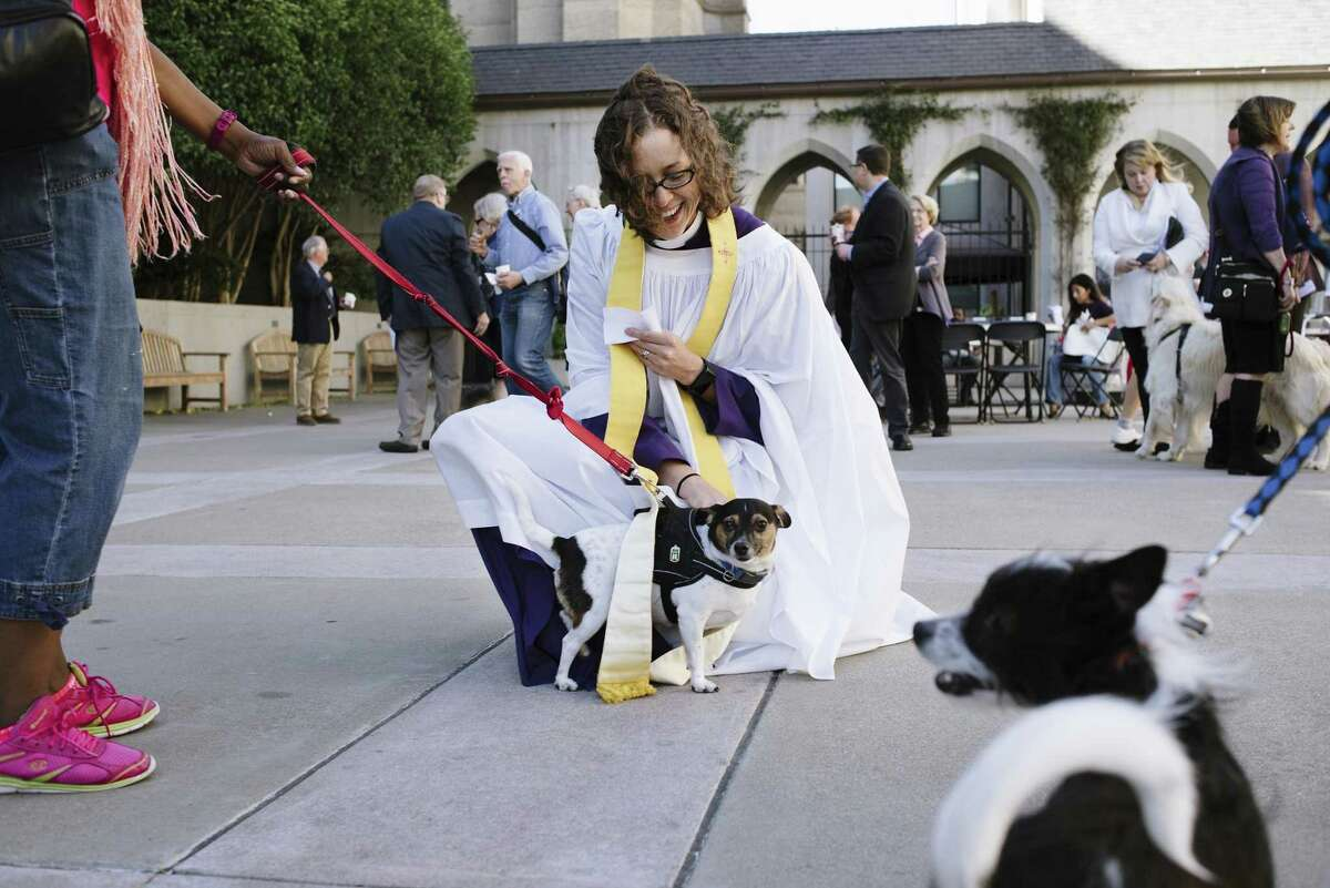 The Rev. Kristin Saylor gives a blessing to a dog, one of the many creatures brought to the Episcopalian cathedral for the annual rite on the day that honors St. Francis, the patron saint of animals.