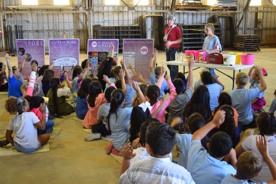 Hale County Fourth-graders spent Thursday morning learning all about agriculture's impact on their daily lives. Photo: Ellysa Harris/Plainview Herald