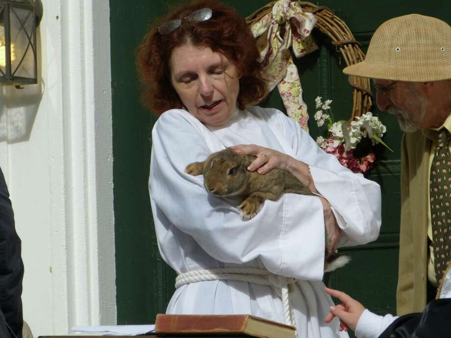 The First Congregational Church of Barkhamsted will hold a Blessing of the Animals service on Saturday. Above, the Rev. Susan Wyman blesses a rabbit and a pair of Golden Retrievers. Photo: Contributed Photos