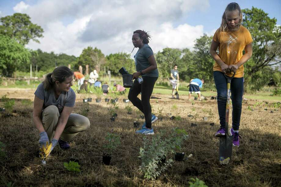 Julie Fisher, Eboni Scott and Emma Majors, 12, plant native pollinators for a butterfly meadow on Saturday. Photo: Josie Norris / San Antonio Express-News / © San Antonio Express-News