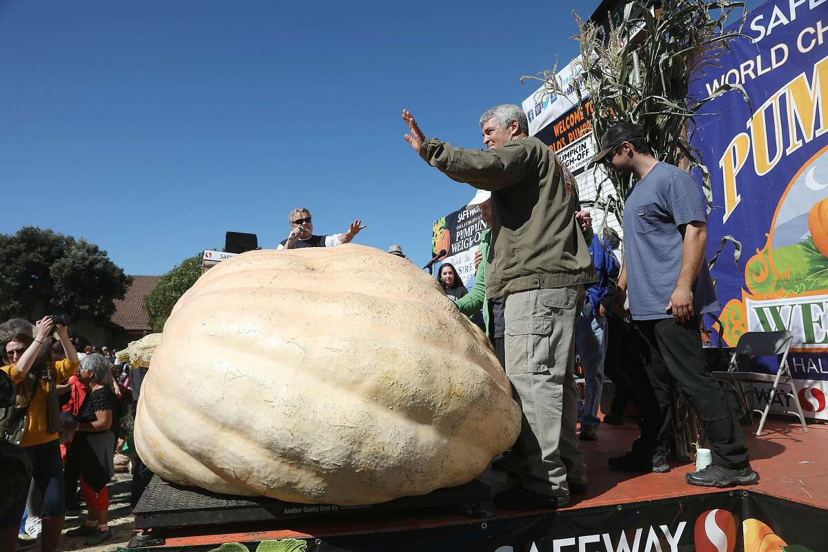 Steve Daletas of Pleasant Hill, Oregon waves to the crowd after winning the 45th Annual Safeway World Championship Pumpkin Weigh-Off on Monday, October 8, 2018 in Half Moon Bay, Calif. Daletas won the 45th Annual Safeway World Championship Pumpkin Weigh-Off with a pumpkin weighing 2, 170 lbs.