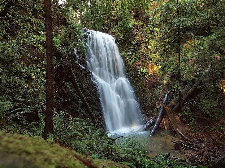Berry Creek Falls is framed by ferns and redwoods deep in Big Basin Redwoods State Park, located near Boulder Creek in the Santa Cruz Mountains; 4.7-mile hike from headquarters to see it