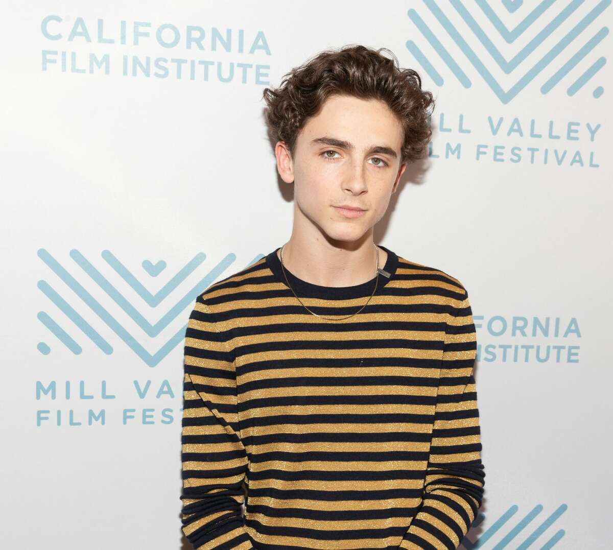Timothee Chalamet attends MVFF41 Red Carpet Arrival for