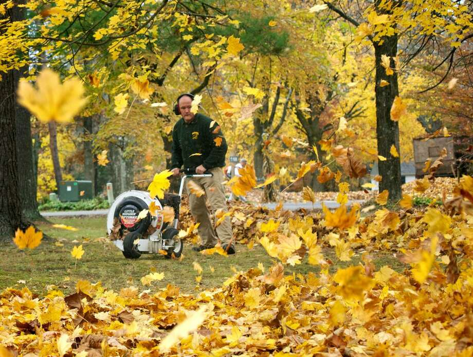 "Volunteers play an integral role in any community. They donate their time, energy, skills and labor to coordinate and manage events, and provide supportive services. Harrybrooke Park & Harden House Museum in New Milford is one of the local non-profit organizations that relies on volunteers throughout the year. One of the events for which volunteers are needed at the park is the annual fall cleanup. Individuals and groups team up to rake leaves, pick up sticks and aid in a variety of other necessary fall tasks. This year's fall cleanup will be held Nov. 3, from 9 a.m. to noon. Interested individuals are asked to bring their own rakes, leaf blowers, gloves and other equipment, and check in at the Ohmen Pavilion, the first pavilion on the way into the park off Still River Drive. Back in 2013, volunteers from Yard Apes Landscaping in New Milford and other individuals, above, helped clean up the park in the fall. If you have a ""Way Back When"" photograph to share, contact Deborah Rose at drose@newstimes.com or 860-355-7324. Photo: Trish Haldin / Trish Haldin / The News-Times Freelance"