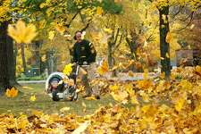 "Volunteers play an integral role in any community. They donate their time, energy, skills and labor to coordinate and manage events, and provide supportive services. Harrybrooke Park & Harden House Museum in New Milford is one of the local non-profit organizations that relies on volunteers throughout the year. One of the events for which volunteers are needed at the park is the annual fall cleanup. Individuals and groups team up to rake leaves, pick up sticks and aid in a variety of other necessary fall tasks. This year's fall cleanup will be held Nov. 3, from 9 a.m. to noon. Interested individuals are asked to bring their own rakes, leaf blowers, gloves and other equipment, and check in at the Ohmen Pavilion, the first pavilion on the way into the park off Still River Drive. Back in 2013, volunteers from Yard Apes Landscaping in New Milford and other individuals, above, helped clean up the park in the fall. If you have a ""Way Back When"" photograph to share, contact Deborah Rose at drose@newstimes.com or 860-355-7324."