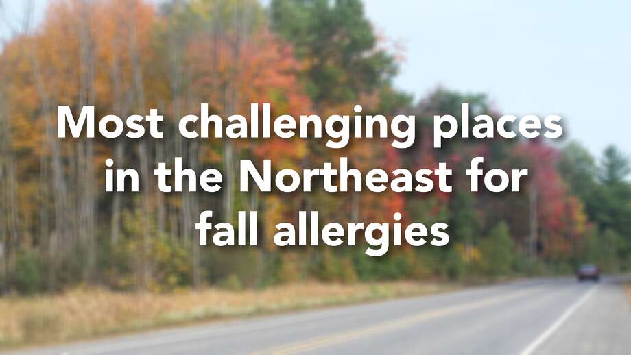 The Asthma and Allergy Foundation of America's 2018 Fall Allergy Capitals annual ranking studied the 100 most-populated Metropolitan Statistical Areas in the contiguous 48 United States and analyzed seasonal pollen score, medication use and number of allergy specialists. 