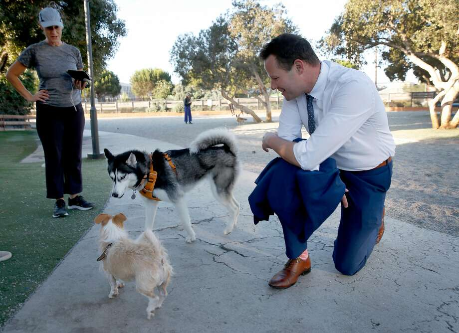 District Six supervisorial candidate Matt Haney meets a couple of canines while discussing issues with Kris Carey (left) at a Mission Bay neighborhood dog park. Photo: Paul Chinn / The Chronicle
