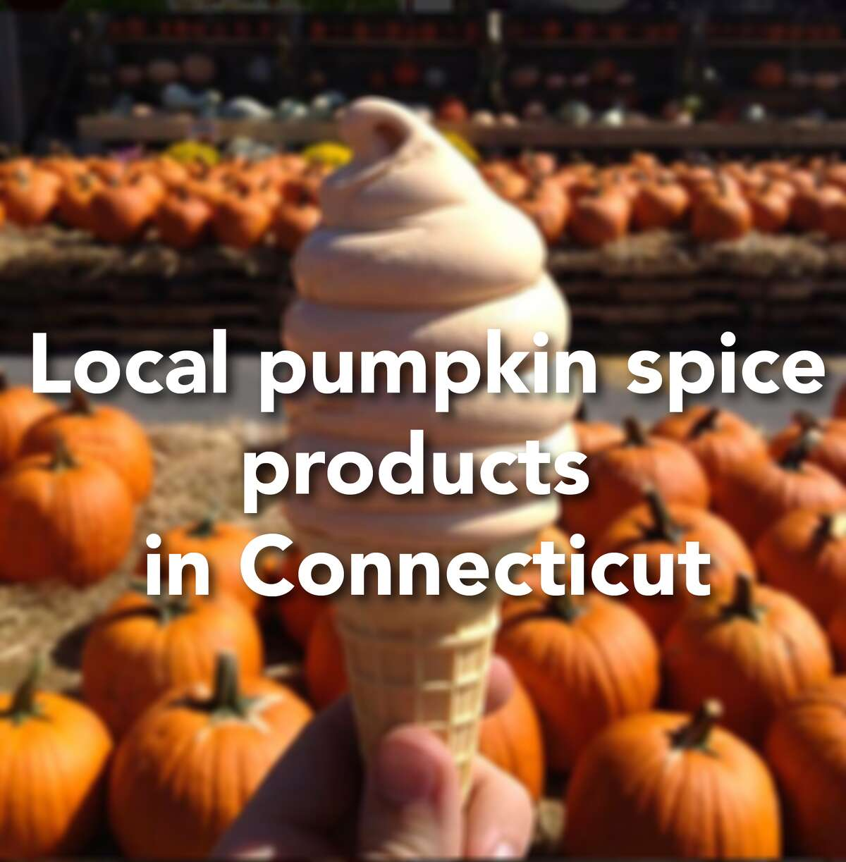 Click through the slideshow to see just some of the places you can find local pumpkin spice products in Connecticut.