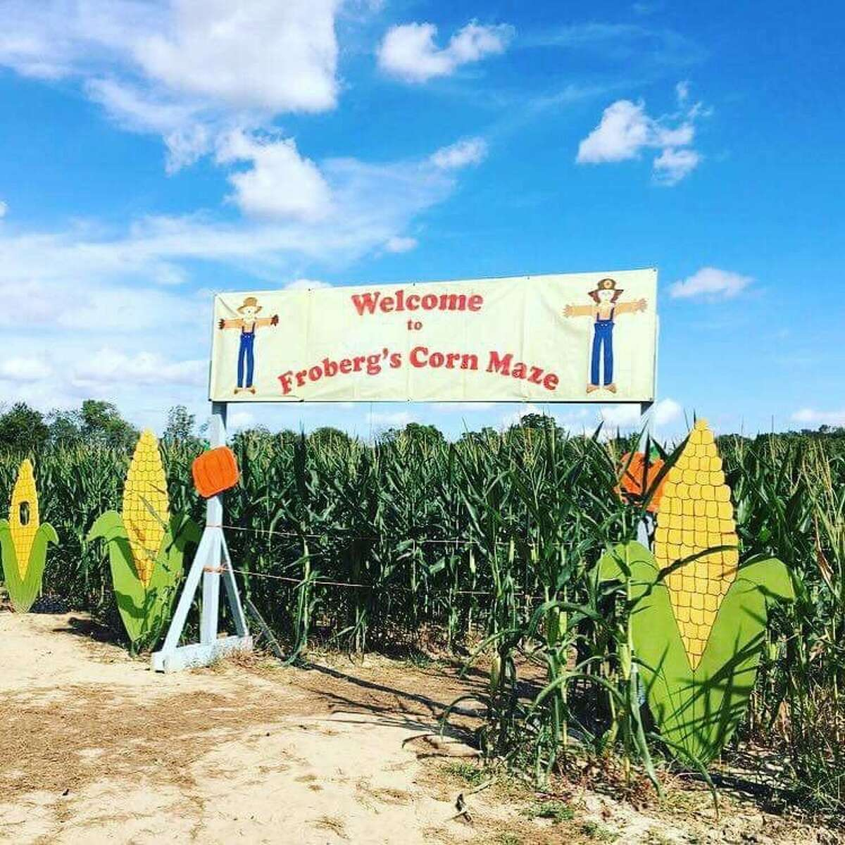 Sept. 28-Nov. 3: Froberg's Farm Fall Festival in Alvin features a corn maze, flower garden, indoor pumpkin patch and a Berry Fun Land for children. Courtesy Felicia B./Yelp