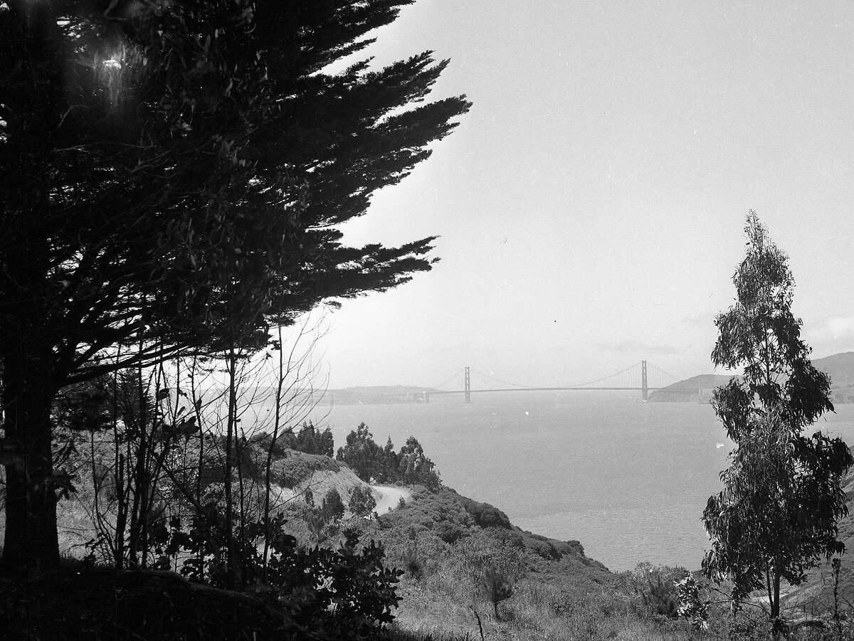 View of Angel Island, August 14, 1946
