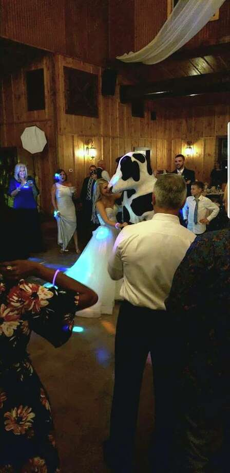 "The mascots for Chick-fil-A, which are often seen on billboards and other advertisements begging people to ""eat mor chikin,"" made a cameo at the wedding of Shelby and Colton McCune on Sept. 29 at Western Sky Wedding and Event Venue. Photo: Courtesy, Shelby McCune"