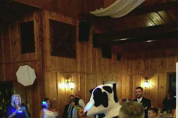 """The mascots for Chick-fil-A, which are often seen on billboards and other advertisements begging people to """"eat mor chikin,"""" made a cameo at the wedding of Shelby and Colton McCune on Sept. 29 at Western Sky Wedding and Event Venue."""