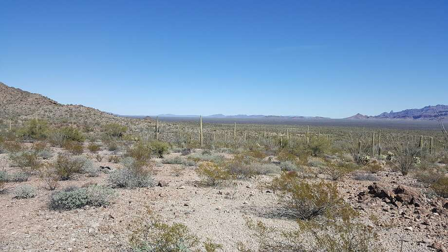 This undated image provided by Tucson Sector Border Patrol shows the desert terrain close to Arizona's boundary with Mexico near Lukeville, Ariz. Large groups of Guatemalan and other Central American migrants have been abandoned in recent weeks. U.S. Border Patrol officials say the trend is putting hundreds of children and adults at risk. (Tucson Sector Border Patrol via AP) Photo: Tucson Sector Border Patrol, Associated Press