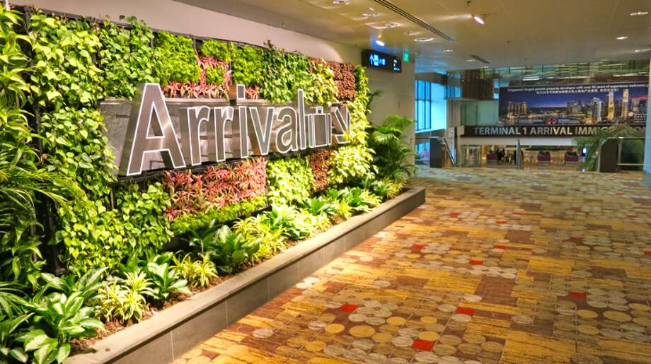 A garden wall at Singapore's magnificent Changi International Airport (Photo: Chris McGinnis) Photo: Chris McGinnis