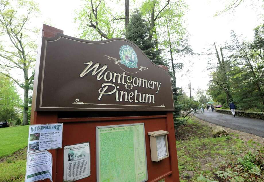Join the Greenwich Tree Conservancy at the newly named Greenwich Botanical Center for a Fall Family Festival at the Montgomery Pinetum at 130 Bible St. from 2 to 4 p.m. Saturday. Do the scavenger hunt, play the tree ID games; and enjoy indoor activities, including art projects with leaves and a wood-whittling demo. Hot cider and doughnuts will be served. Visitors can also stroll through the newly plaqued Arboretum in the Pinetum. For more information, visit www.greenwichtreeconservancy or call 203-622-7380 Photo: File / Bob Luckey Jr. / Hearst Connecticut Media / Greenwich Time