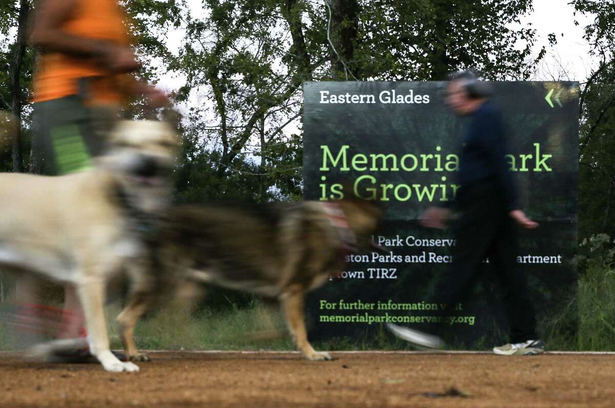 Joggers and their dogs run on the the Eastern Glades at Memorial Park on Thursday, Oct. 11, 2018 in Houston. The new trail, which is part of the park's ongoing masterplan, opened on Monday.
