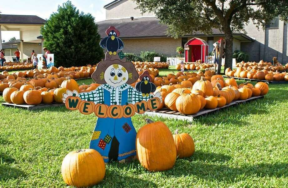 The Deer Park United Methodist Church's pumpkin patch attracts hundreds of visitors each year and serves as the perfect lead-in to the church's annual Fall Festival, held this year from 10 a.m. to 3 p.m. Oct. 20.