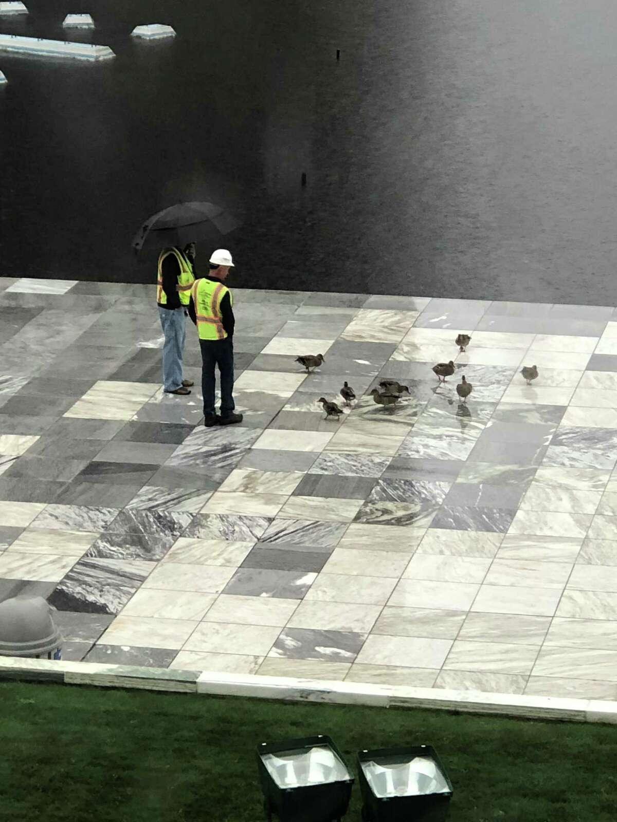 Erica Lovrin captures some of the goings-on at the Empire State Plaza last week.
