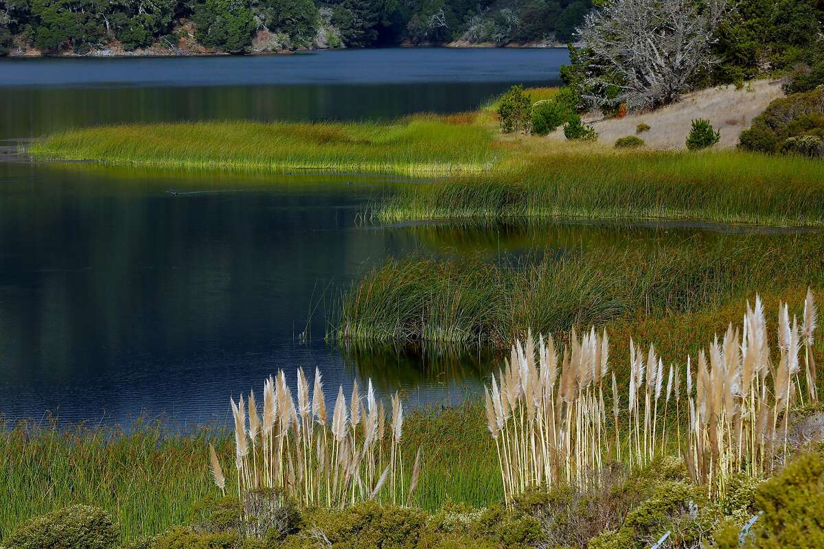 The Lower Crystal Springs Reservoir on Thursday, Oct. 11, 2018, in San Mateo County, Calif.