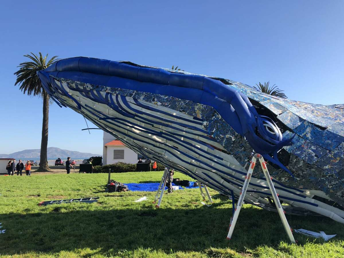 An 82-foot-long sculpture of a blue whale was revealed at Crissy Field on Oct. 12, 2018. The art installation, commissioned by the Monterey Bay Aquarium, was meant to draw attention to the problem of plastic pollution in the ocean.