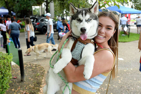 Kayley Goodhue holds husky Miya during Dogtoberfest on Saturday. Photo taken Saturday 10/13/18 Ryan Pelham/The Enterprise