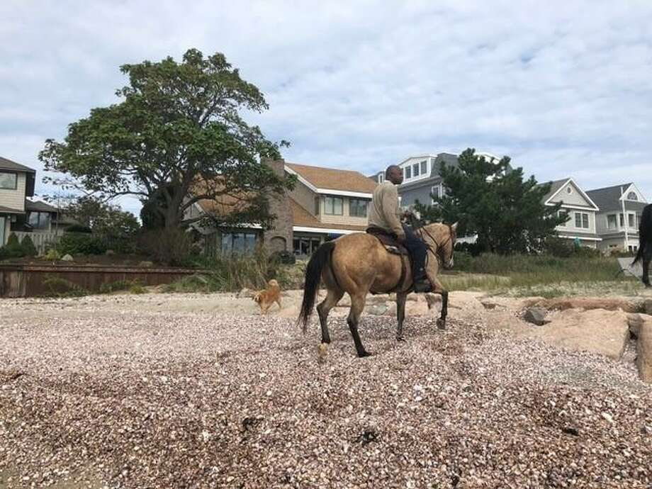 A horse died Sunday on a beach off of Fairfield Beach Road. Here, photos reportedly of the party involved. Photo: David Loffredo