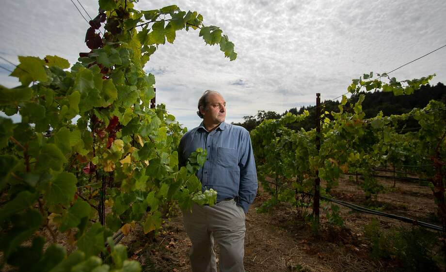 Distiller Dan Farber with Pinot Noir vines in his vineyard. Photo: Patrick Tehan / Special To The Chronicle
