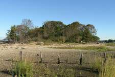 A photo on Peach Island, a 2.6-acre island owned by the U.S. Fish & Wildlife Service.