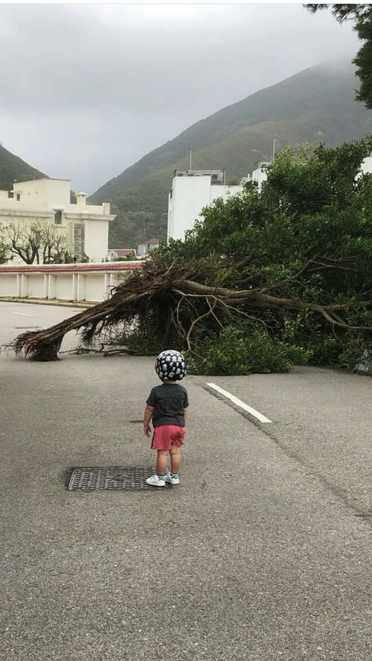 Knapp's 2 year-old-grandson Nash surveying some of the damage after Typhoon Mangkhut slammed into Hong Kong last month.