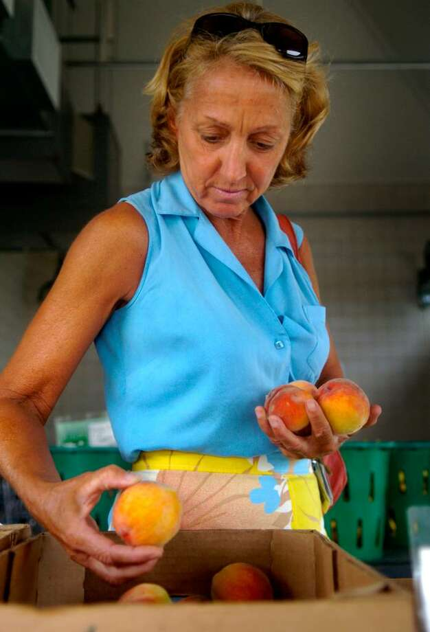LuAnne Roy of Seymour chooses ripe peaches from Gazy Brothers Farm during the Shelton Farmer's Market on Wednesday, July 14, 2010. Photo: Lindsay Niegelberg / Connecticut Post