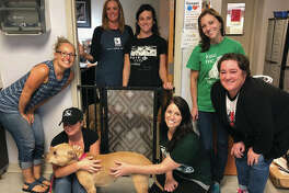Donna Potter, owner of Fusion Gates, far left, with staff members of Stray Rescue of St. Louis.