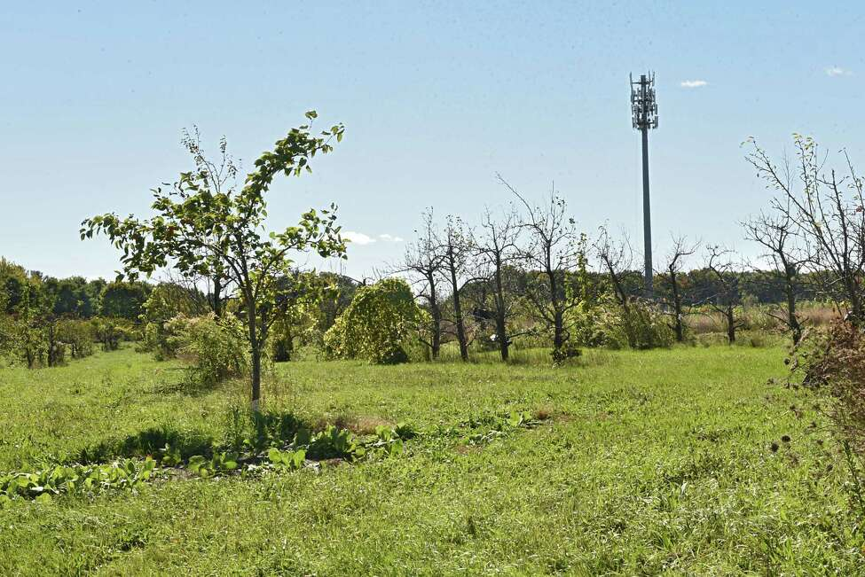 A cell tower is seen on the property of Malta Ridge Orchard and Gardens on Thursday, Oct. 18, 2018 in Ballston Spa, N.Y. (Lori Van Buren/Times Union)