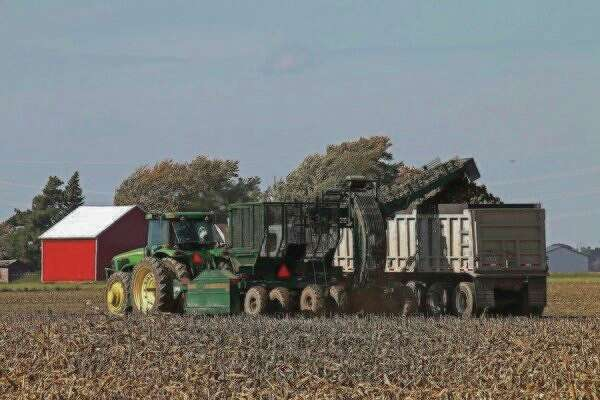 The annual fall harvest is well underway, as seen in these shots of farmers recently working in a field near Sebewaing. (Bill Diller/For the Tribune)