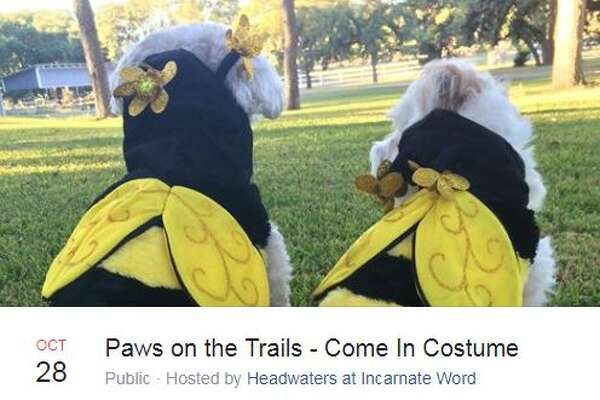 Paws on the Trails Oct. 28, 1 - 3 p.m.Headwaters at Incarnate Word, 4503 Broadway StreetHosted by Headwaters at Incarnate Word