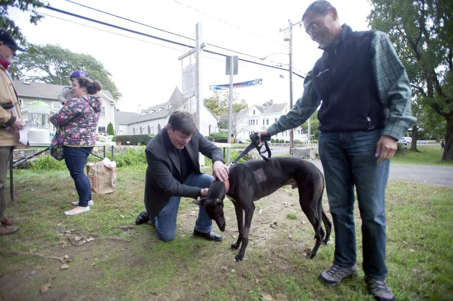 Rowayton United Methodist Church pastor J. Michael Cobb gives a blessing to four-year-old greyhound Kumo and his owner Toshi Bekku, of Westport, during a Blessing of the Animals ceremony in Pinkney Park in Norwalk on Oct. 14. Photo: Michael Cummo / Hearst Connecticut Media / Stamford Advocate