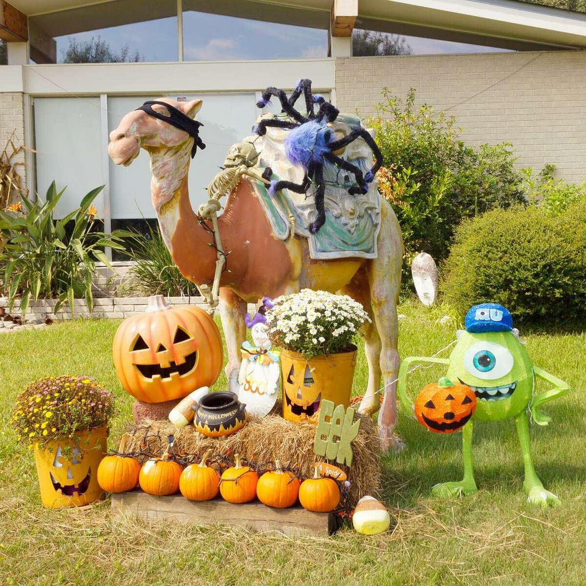 Lesson No. 3: Don't try to disguise your Christmas decorations for Halloween. Happy Camel-ween is not a thing. Sorry, you're not fooling us. We would know that camel from your nativity lawn ornament set anywhere.