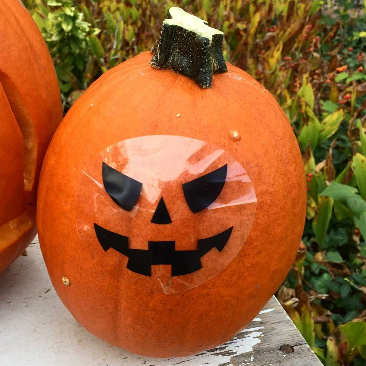 Lesson No. 2: Halloween is also not an excuse to be lazy. Sticker jack o' lantern faces make for a sad state of affairs. Using a Sharpie to draw a jack o' lantern face is pretty lazy, but slapping on a jack o' lantern face sticker is a new low.