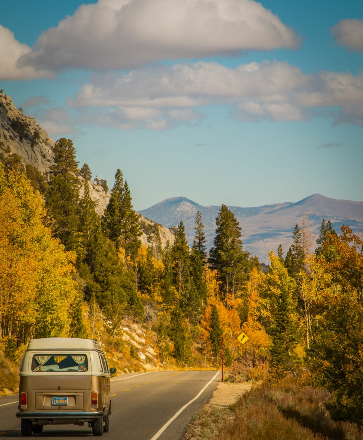 Peak fall foliage conditions are viewable along Rock Creek Road and most of Mono County.