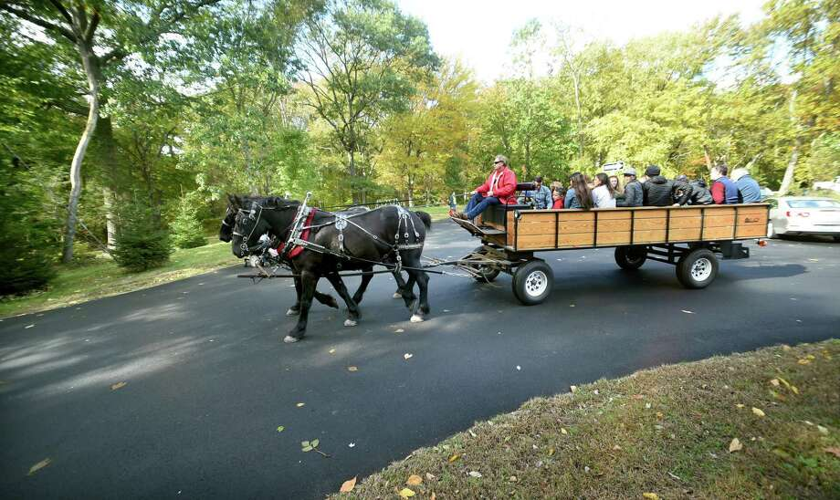 Children and their parents begin a horse drawn wagon ride during the Autumn Festival at the Ansonia Nature Center on October 20, 2018. Photo: Arnold Gold / Hearst Connecticut Media / New Haven Register