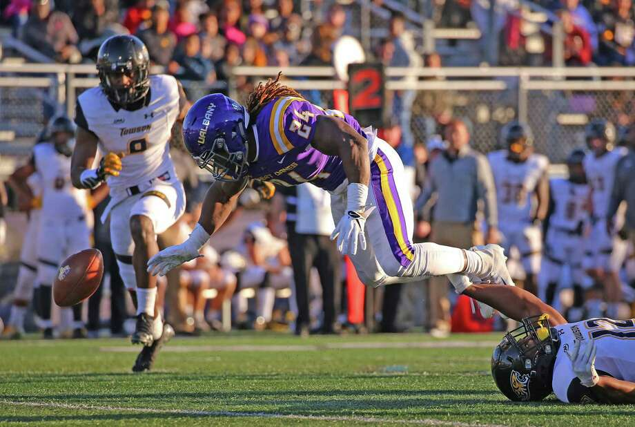 UAlbany running back Elijah Ibitokun-Hanks fumbles the ball against Towson during their game on Saturday, Oct. 20, 2018. (Thomas Palmer / Times Union)