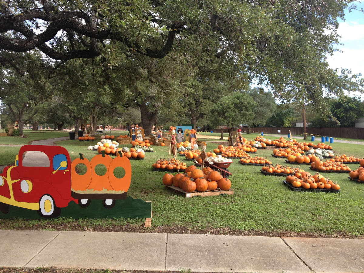 Traveling Loaves & Fishes Pumpkin Patch:1602 Thousand Oaks Drive Opens Oct. 5.