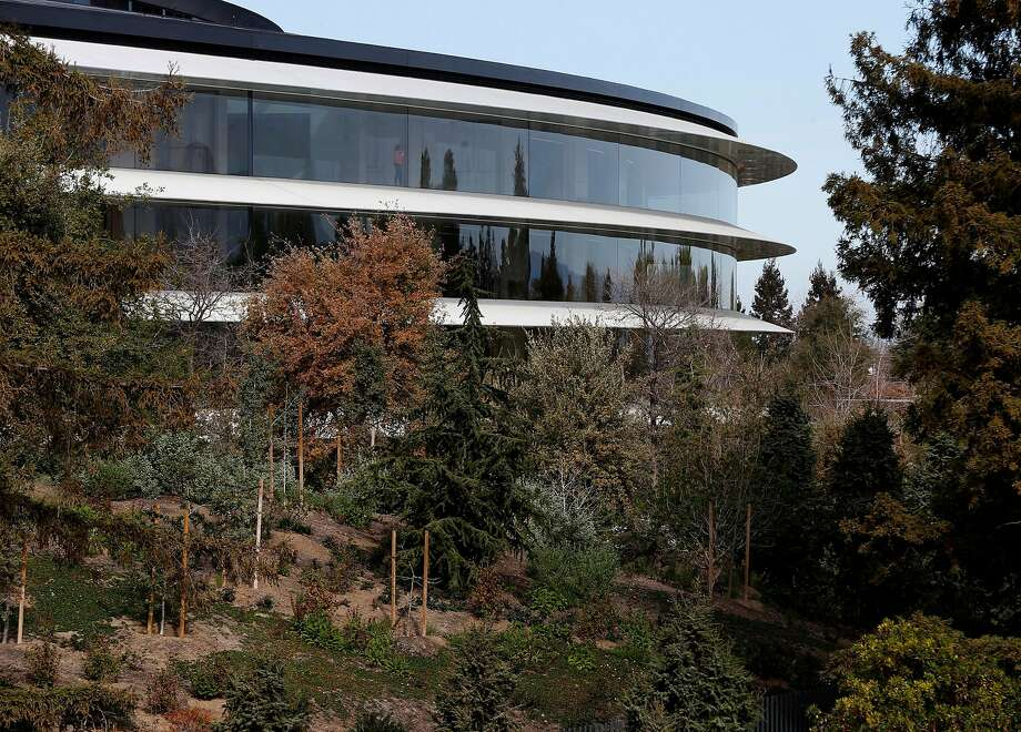 The circular Apple Park headquarters building is visible from the roof of the visitor center in Cupertino. At 2.8 million square feet, it is one of the world's most valuable buildings. Photo: Paul Chinn / The Chronicle 2018